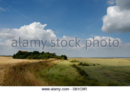 Bradwell on sea, Essex,Farmland and marshes. Protected habitat, England,Britain,UK, - Stock Photo