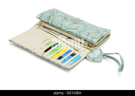 Wallet With Snake Skin Texture on White Background - Stock Photo
