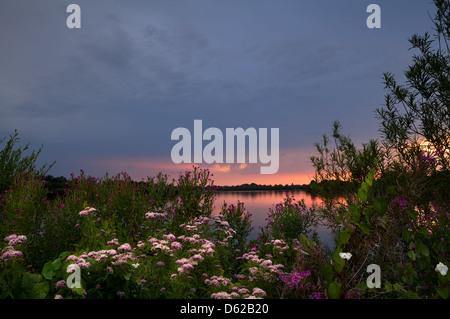 sunset on lake and many wildflowers - Stock Photo