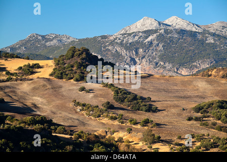 Mountains and fields in Andalucia - Stock Photo