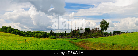 panorama landscape with hill of crosses in lithuania - Stock Photo
