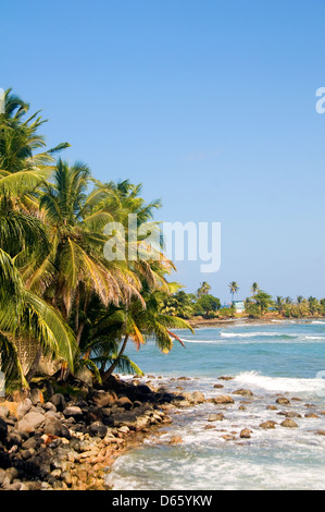 landscape seascape palm coconut trees Caribbean Sea Content Point Big Corn Island Nicaragua Central America - Stock Photo