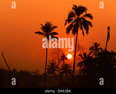 Sunrise in the village of Tamborim in South Goa, India - Stock Photo