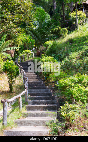 stone staircase with wooden hand rail in the jungles of Thailand - Stock Photo