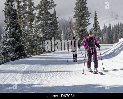 Man and woman skinning uphill on alpine touring skis at Monarch Mountain, Continental Divide, Colorado, USA - Stock Photo