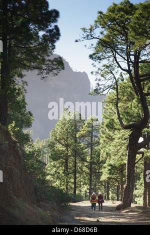 La Palma, Canary Islands - La Cumbrecita, mountain ridge national park area. Elderly couple walking on trail.