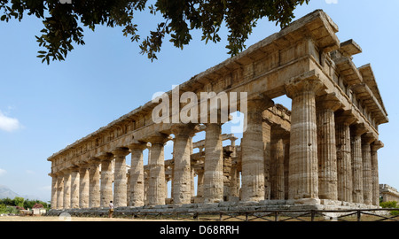 Paestum. Campania. Italy. View of the rear and the north side of the Temple of Poseidon (of Neptune). Dates from - Stock Photo