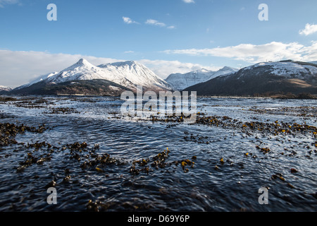 Snowy mountains over salmon farm - Stock Photo