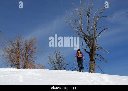 Backcountry skier walking up mountain above Galena Pass, Sawtooth Ntl. Forest, Idaho - Stock Photo