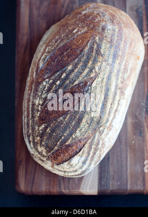 A loaf of freshly baked crusty sourdough bread on a dark cutting board in soft window light - Stock Photo