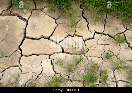 italy, tuscany, val d'orcia, cracked ground close up - Stock Photo