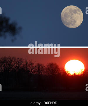 A composite picture shows the rising moon (TOP) and the setting sun behind a line of trees at the outskirts of Berlin, - Stock Photo