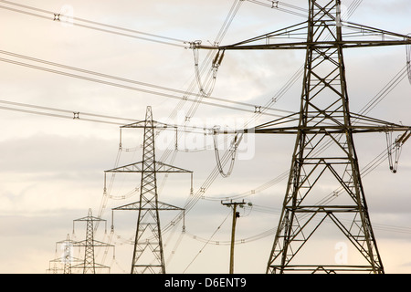 Electricity pylons leaving Wylfa nuclear power station on Anglesey, Wales, UK. - Stock Photo
