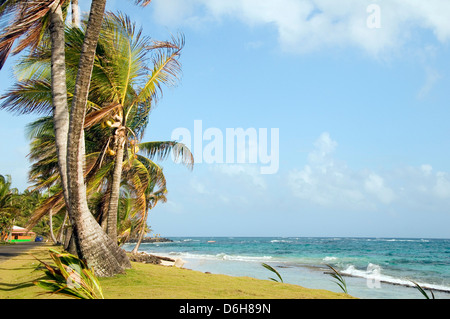 undeveloped Sally Peach beach palm trees on Caribbean Sea with native building Big Corn Island Nicaragua Central - Stock Photo