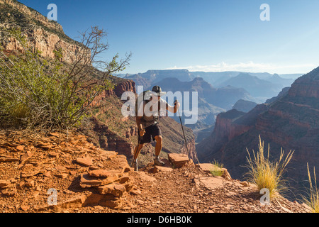Man hiking trail in Grand Canyon - Stock Photo
