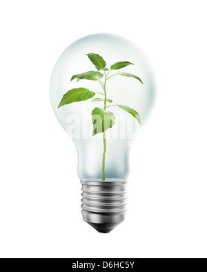 Green energy, conceptual artwork - Stock Photo