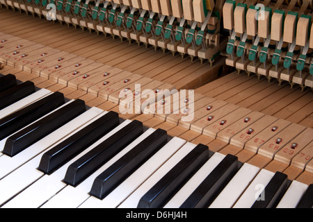 keys and mechanics in the inner side of a piano - Stock Photo