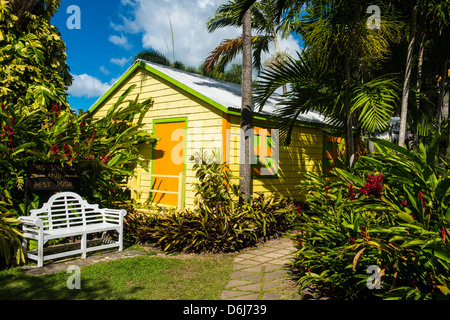 Romney Manor on St. Kitts, St. Kitts and Nevis, Leeward Islands, West Indies, Caribbean, Central America - Stock Photo