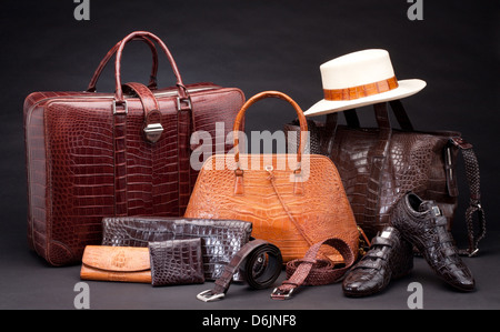 Set of fashion products which made of crocodile leather - Stock Photo