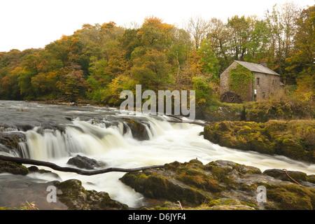 Cenarth Waterfalls, Carmarthenshire, Wales, United Kingdom, Europe - Stock Photo