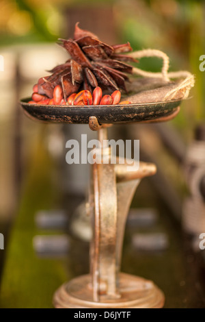 Weighing scales and chillies, Golden Triangle, Thailand, Southeast Asia, Asia - Stock Photo