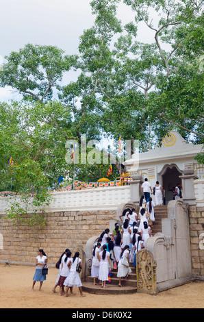 Buddhist pilgrims, Sri Maha Bodhi, UNESCO World Heritage Site, Anuradhapura, North Central Province, Sri Lanka - Stock Photo
