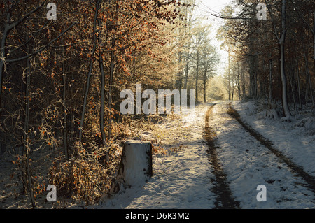 Rural winter scene, near Villingen-Schwenningen, Baden-Wurttemberg, Germany, Europe - Stock Photo