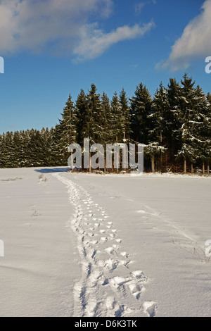 Black Forest in winter, near Villingen-Schwenningen, Baden-Wurttemberg, Germany, Europe - Stock Photo