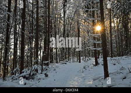 Rural winter scene, near Villingen-Schwenningen, Schwarzwald-Baar, Baden-Wurttemberg, Germany, Europe - Stock Photo