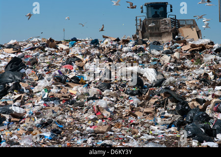 Caterpillar compactor working in a landfill - Stock Photo