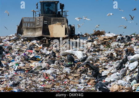 Truck moving trash in a landfill - Stock Photo