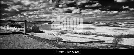 England, County Durham, Derwent Valley. Infrared Black and white shot of the peaceful Derwent Valley - Stock Photo