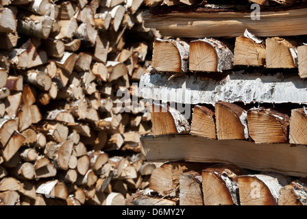 Chopped birch wood logs stacked in big piles. - Stock Photo