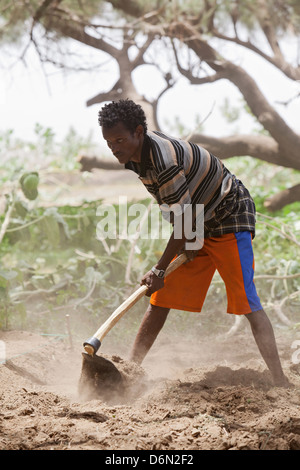 Awash, Ethiopia, man working in the fields - Stock Photo
