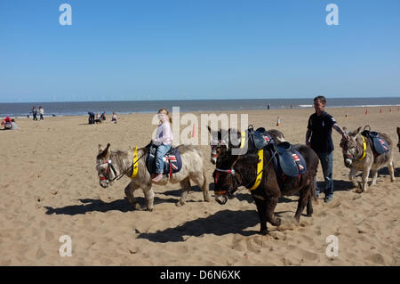 Donkey rides on the beach at Skegness - Saturday April 20th 2013 - Stock Photo