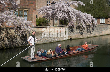Cambridge, UK. 21st April, 2013. People in Cambridge are out on the river punting and enjoying the sunshine as spring - Stock Photo
