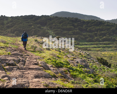 Male hiker on his way across the Teno Alto plateau in the west of Tenerife Spain, varied landscape with farms and - Stock Photo