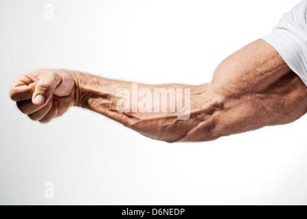 Hamburg, Germany, the arm of a bodybuilder - Stock Photo