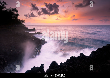 MacKenzie State Recreation Area, Big Island, Hawaii - Stock Photo