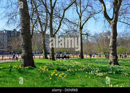Hyde Park in spring, City of Westminster, London, Greater London, England, United Kingdom - Stock Photo