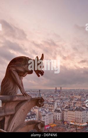 A gargoyle on Notre Dame de Paris cathedral looks over the city, Paris, France, Europe - Stock Photo