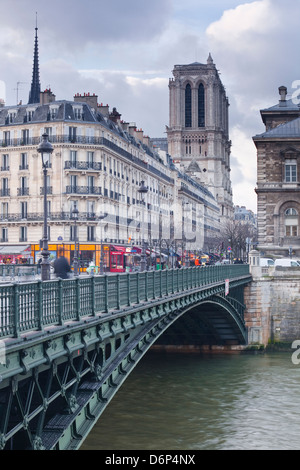 The banks of the Seine and Notre Dame de Paris cathedral, Paris, France, Europe - Stock Photo