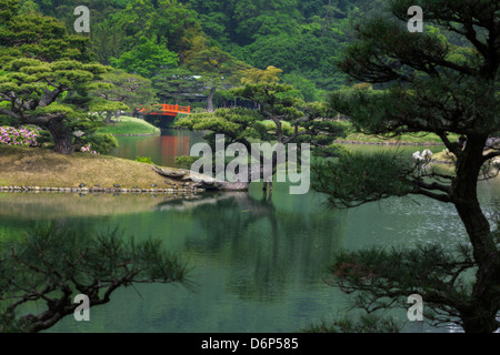 Japanese garden with a pond, red bridge, ornamental pine trees and turtles on the bank. - Stock Photo