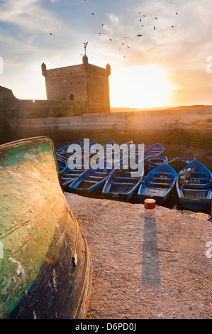 Blue fishing boats in Essaouira Port, formerly Mogador, Morocco, North Africa, Africa - Stock Photo