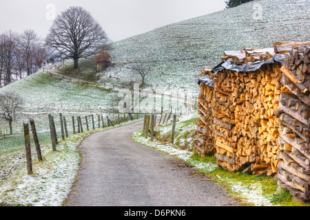 Winding road and wood pile near St. Trudpert Monastery, Munstertal, Black Forest, Baden-Wurttemberg, Germany, Europe - Stock Photo