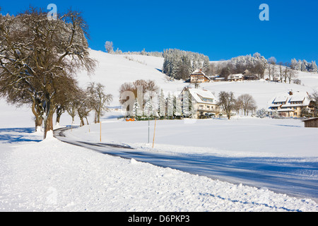 Black Forest farmhouses in winter near Sankt Peter (Saint Peter), Black Forest, Baden-Wurttemberg, Germany, Europe - Stock Photo