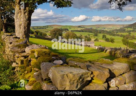 Farm near Burnsall, Yorkshire Dales National Park, Yorkshire, England, United Kingdom, Europe - Stock Photo