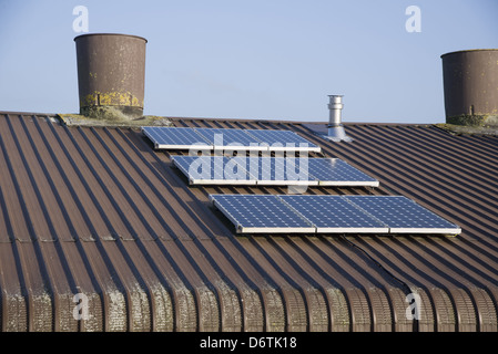 Chicken farming, solar panels on roof of poultry unit, Lancashire, England, November - Stock Photo