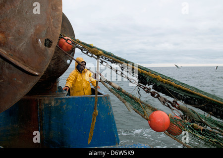 Fisherman hauling back dragger net on fishing trawler. Stellwagen Banks, New England, United States, North Atlantic Ocean