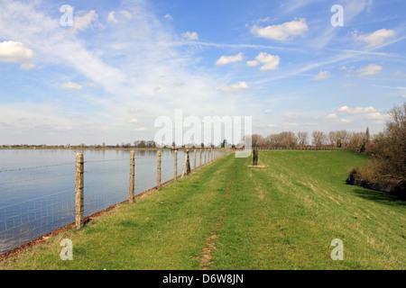 Island Barn Reservoir, West Molesey, Surrey England UK - Stock Photo